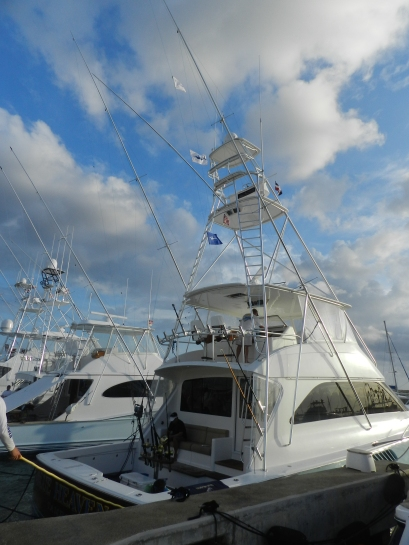 Blue Heaven 2 Bue Marlin and 1 White Marlin on April 04th.
