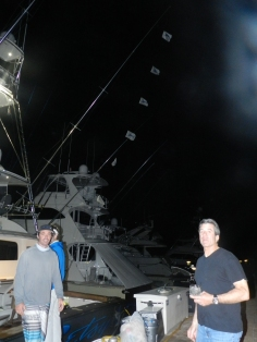 Betsy Sportfishing. 6 Blue Marlin relases on. April, 25th.