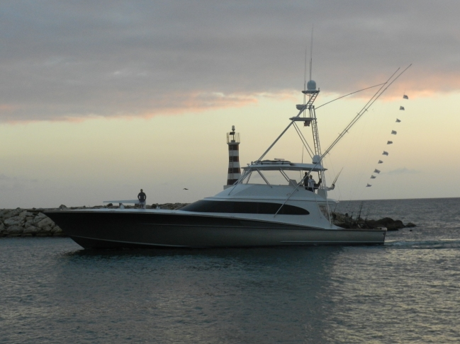 Betsy 10 relased Blue Marlin. 21 Feb, 2013