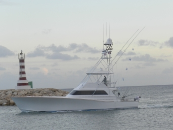 Chach 5 relased Blue Marlin. 27 of May.