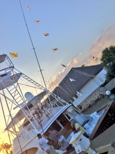 Chasin Tail 7-8 On #BlueMarlin. 03-26-14