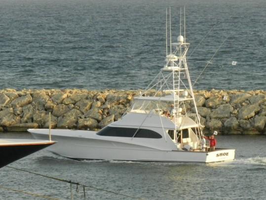 DSCN1549 (Large)