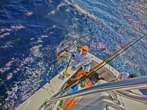 Blue Heaven- Jenny's first Blue Marlin